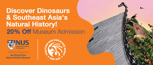 Lee Kong Chian Natural History Museum | The Best NDP E-Vouchers to Use This National Day 2021